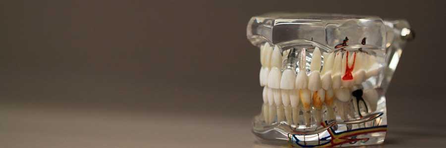 Зубного техника повышение квалификации повышение квалификации юристов тюмень